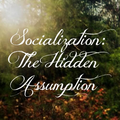 Socialization: The Hidden Assumption